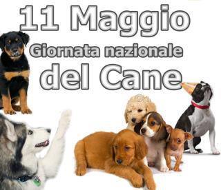 11 maggio giornata del cane